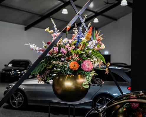 van ballegooijen autos